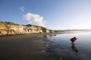 New Plymouth Back Beach