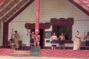Far north tour - Waitangi