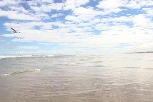 Far north tour - Ninety Mile Beach
